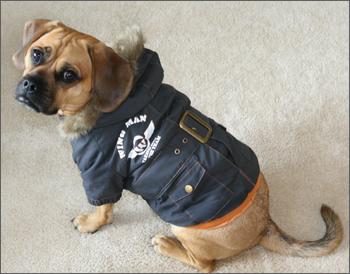 bomber_jacket1
