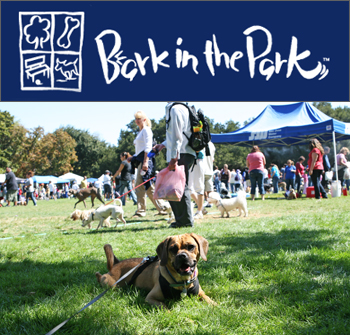 20080920_barkinthepark1.jpg