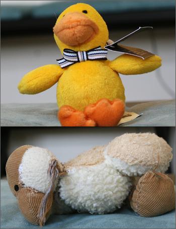 20081208_ducks.jpg
