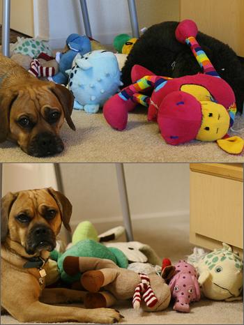 20090202_toys.jpg