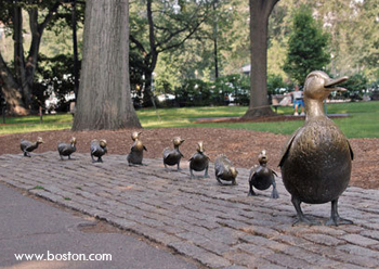 20090426_bostonducking.jpg