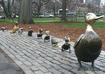 20090426_duckling.jpg