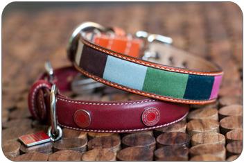 20091203_collar2