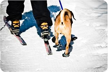 20100306_ski4-2