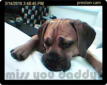 20100314_webcam2a