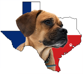 Texas Puggle